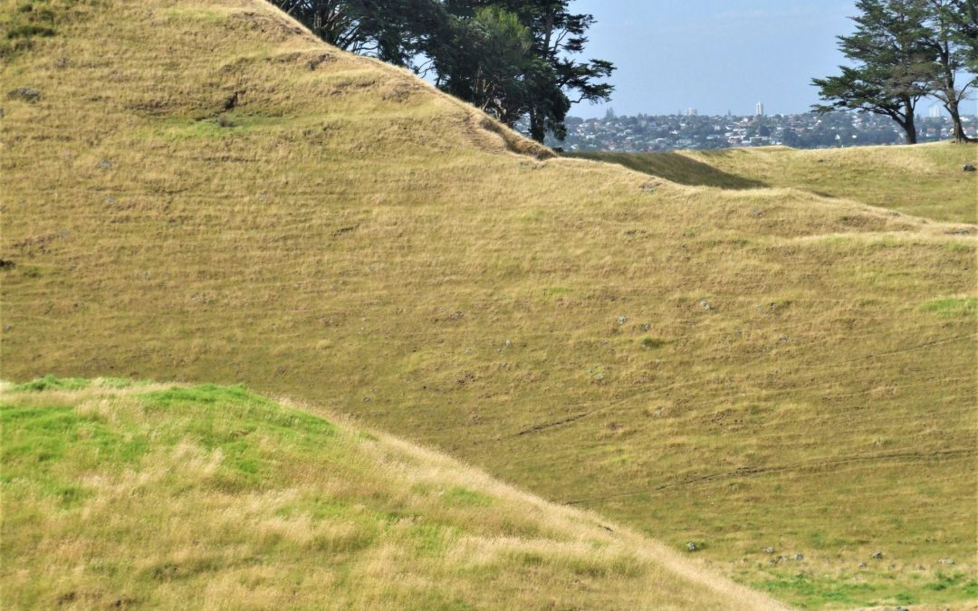 Nga Tapuwai o Mataoho, footprints of Mataoho. Mangere Mountain